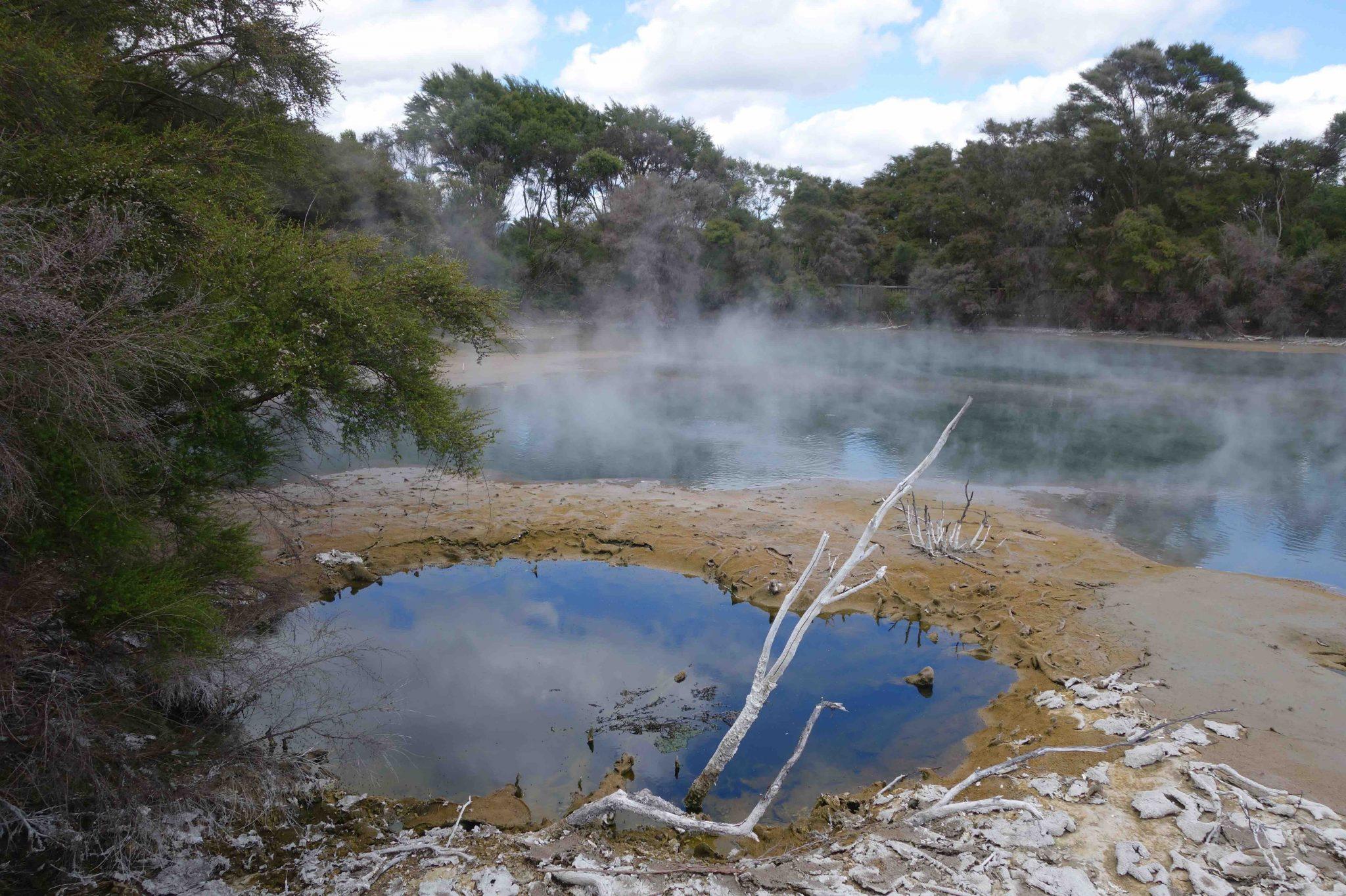 Rotorua_GeothermalSprings_Quellen_4