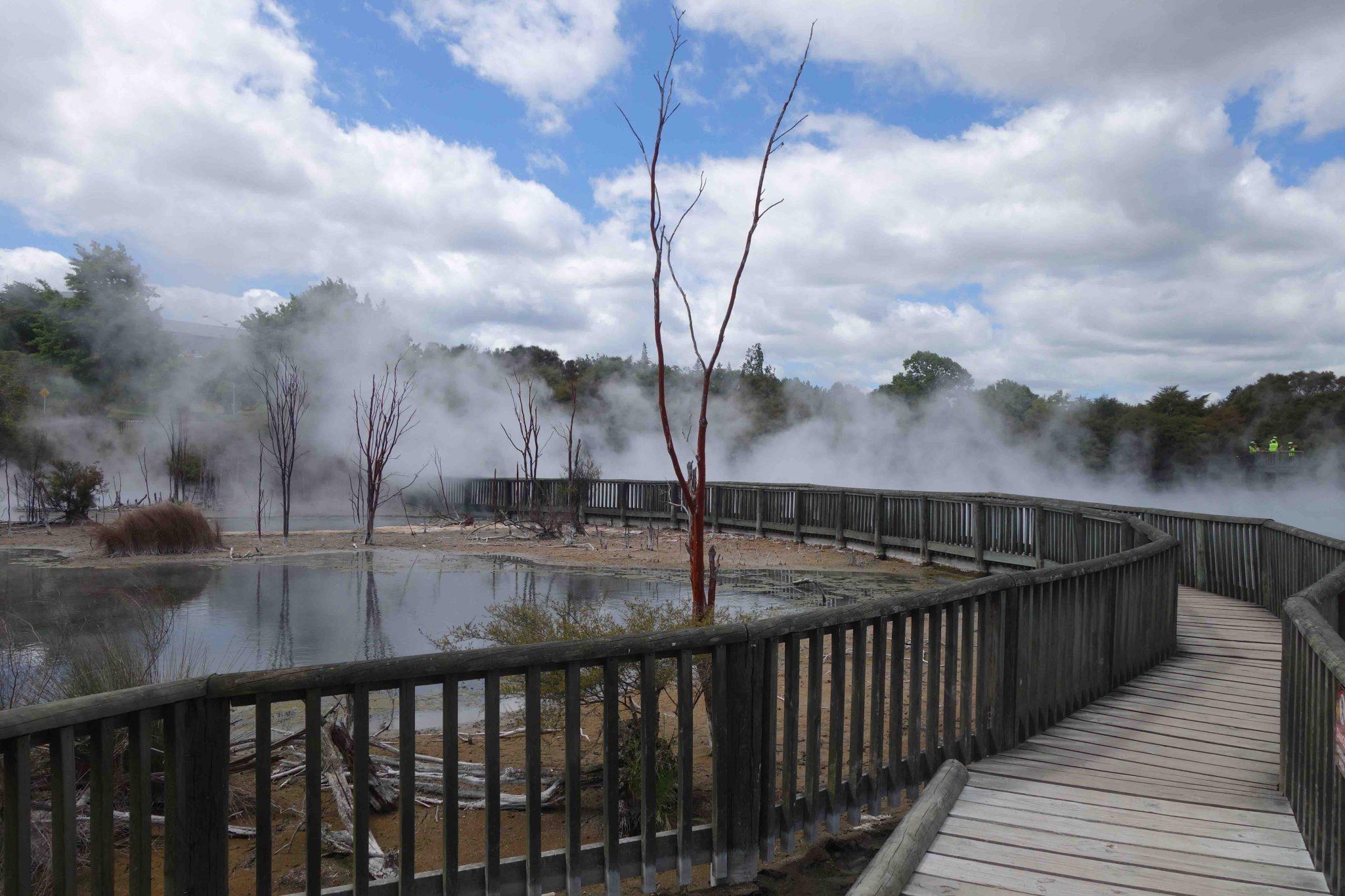 Rotorua_GeothermalSprings_Quellen_6