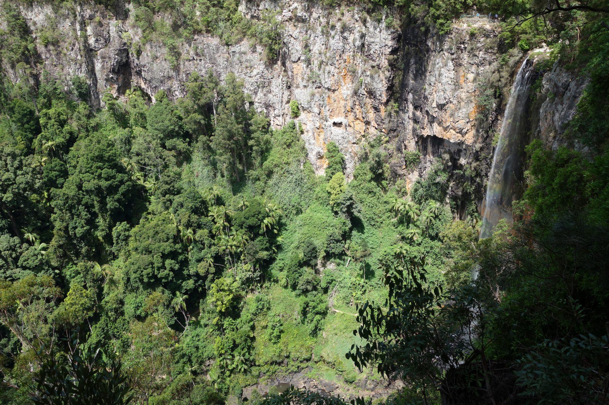 Australien_Ostkueste_SpringbrookNationalPark_12_Waterfall