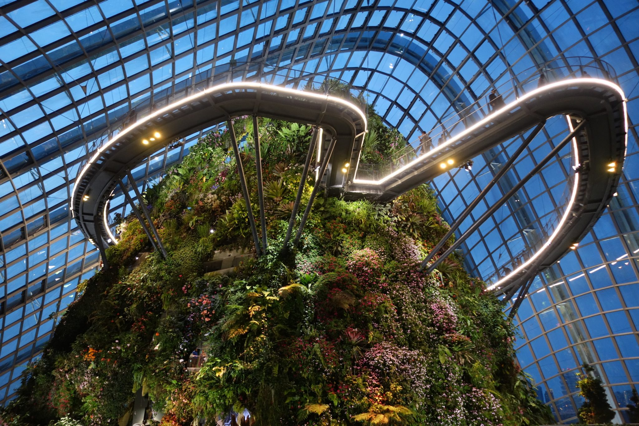 Singapur_GardensbytheBay_CloudForest_6