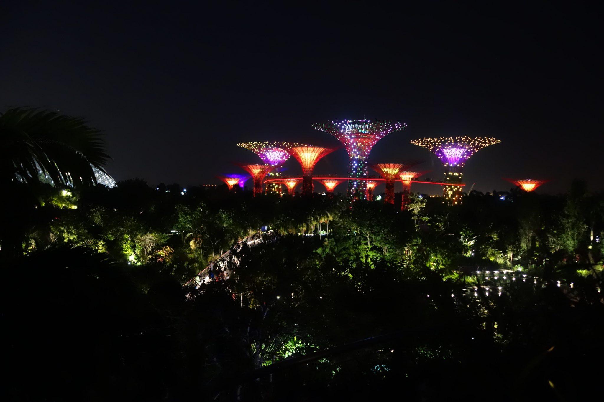 Singapur_GardensbytheBay_SkyTrees_beiNacht_1