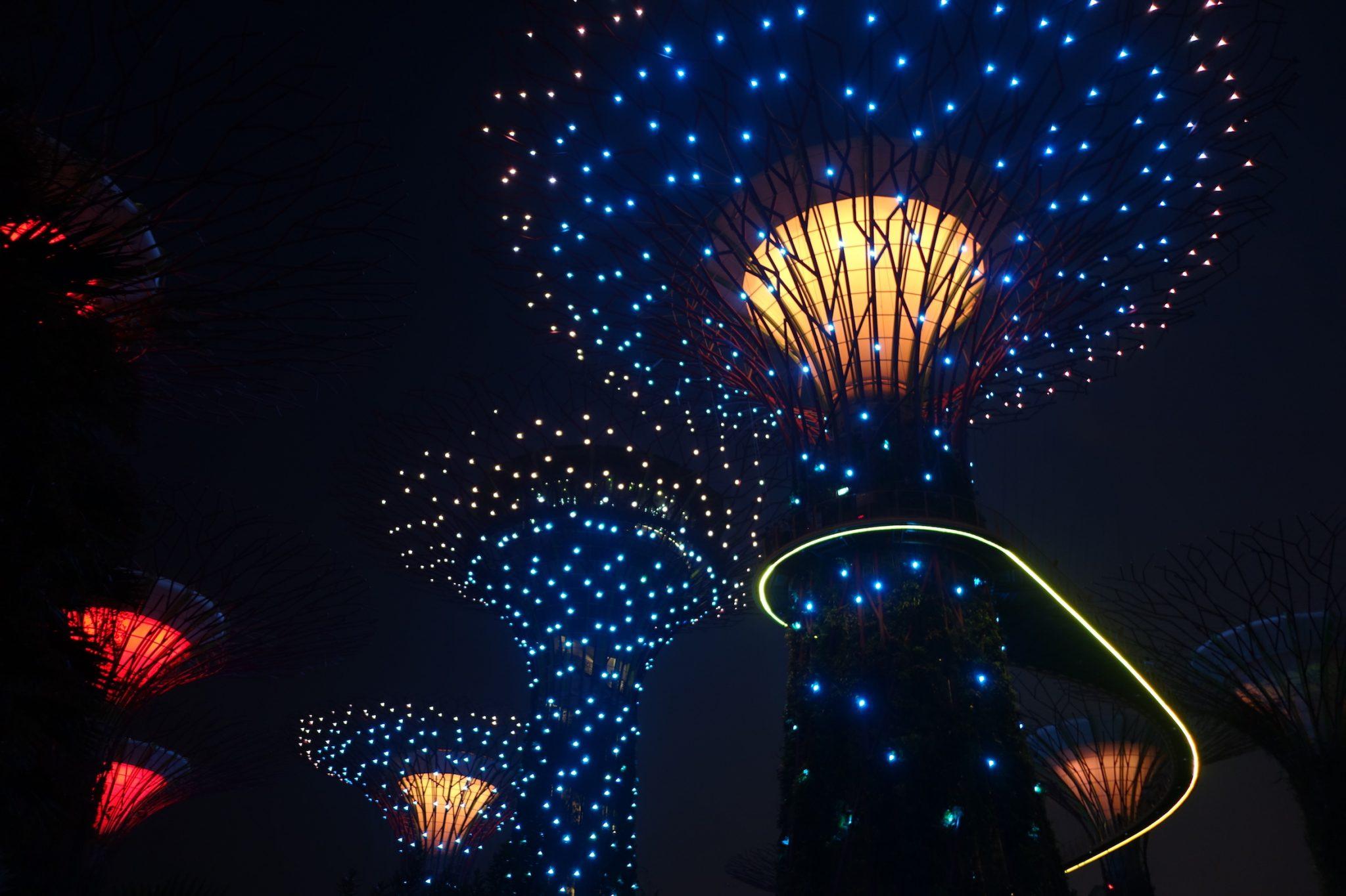 Singapur_GardensbytheBay_SkyTrees_beiNacht_2