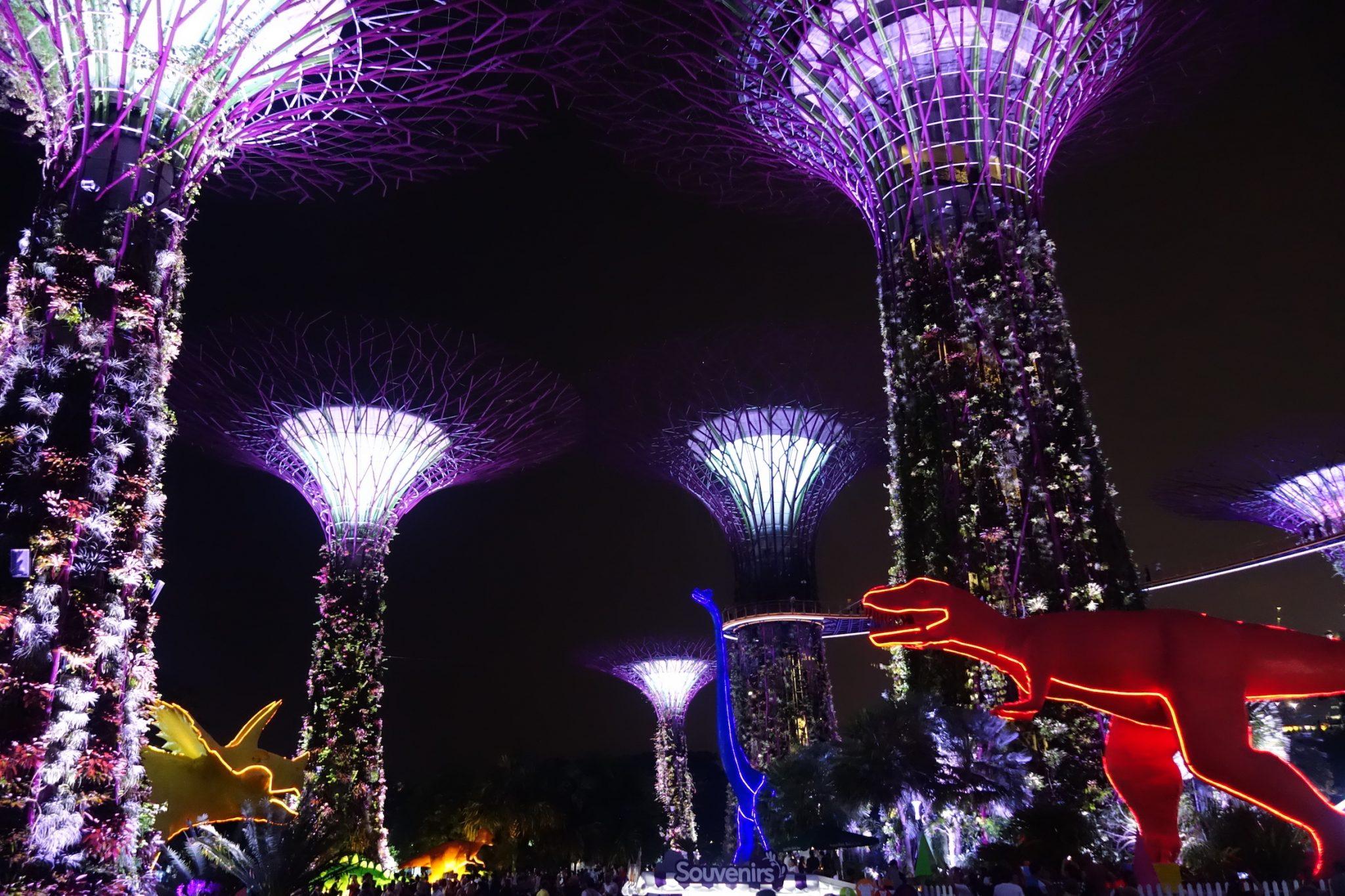 Singapur_GardensbytheBay_SkyTrees_beiNacht_6